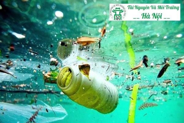 Ô nhiễm môi trường nước do rác thải từ con người