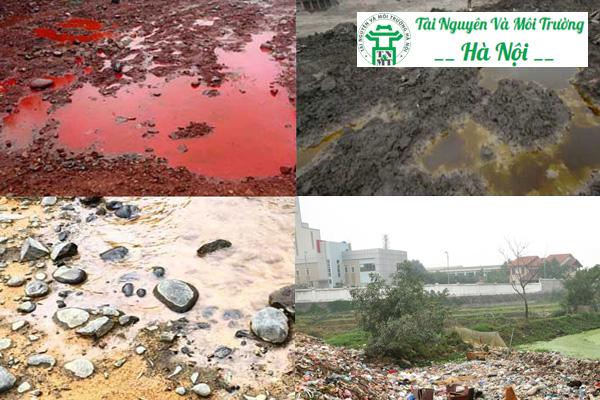 Thực trạng ô nhiễm môi trường đất hiện nay tại TPHCM