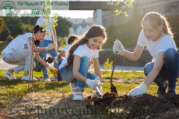 Trồng cây xanh bảo vệ môi trường