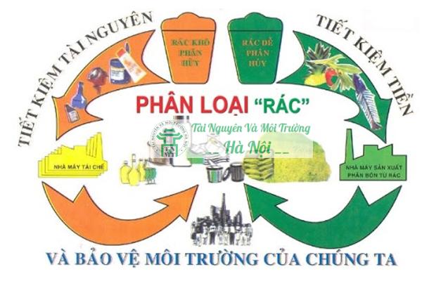Thực hiện thu gom và phân loại rác thải
